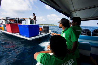 Maldives Environmental Protection Agency Rangers at work